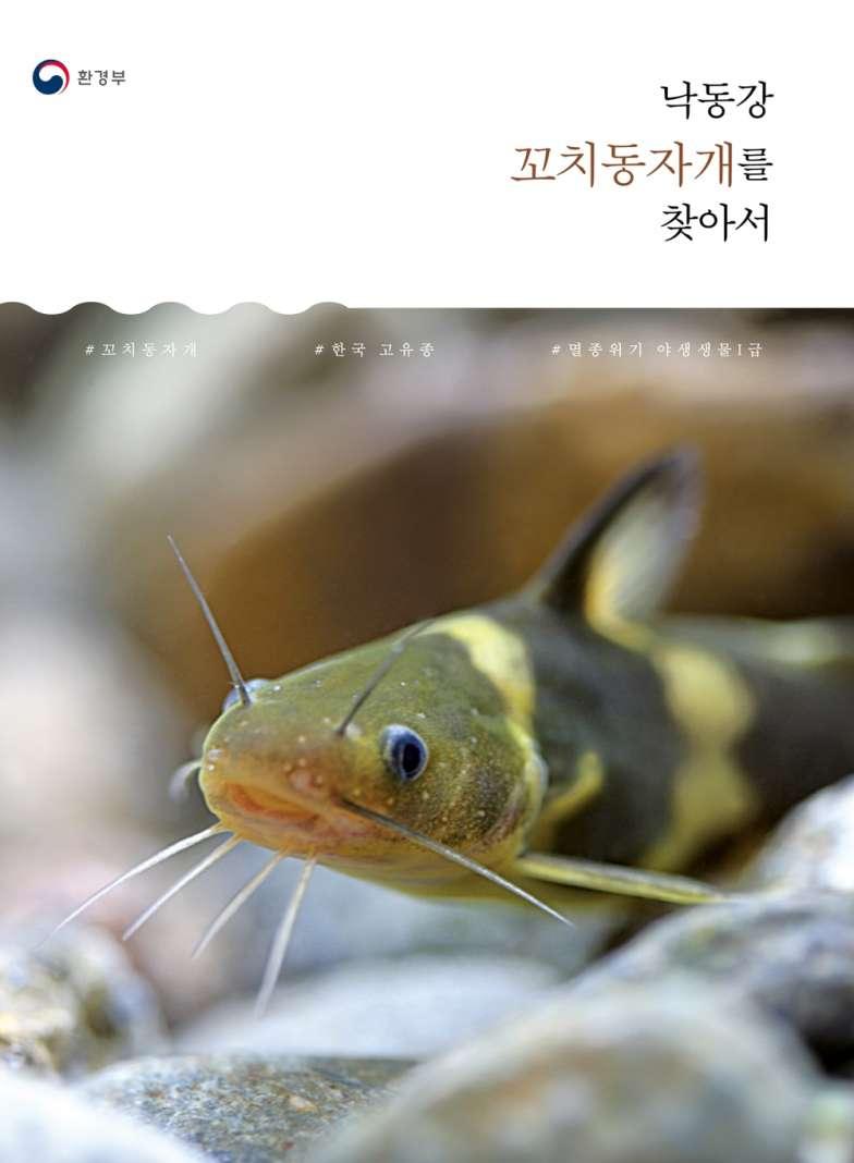 '낙동강 꼬치동자개를 찾아서' 책자 표지 ⓒ환경부.jpg