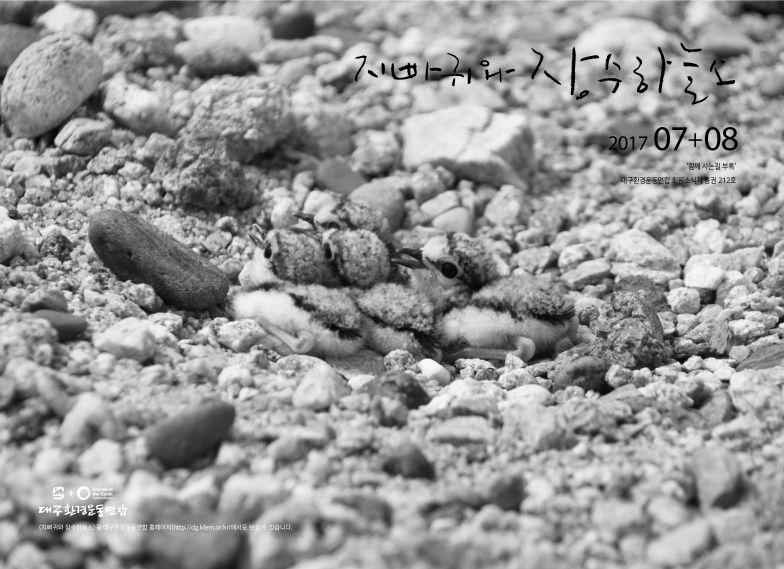 지빠귀와장수하늘소2017.07+08.jpg